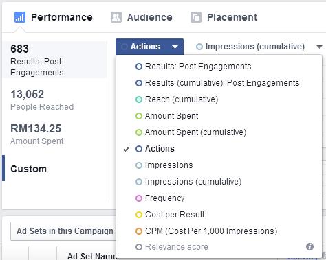 Campaign Performance Custom_1